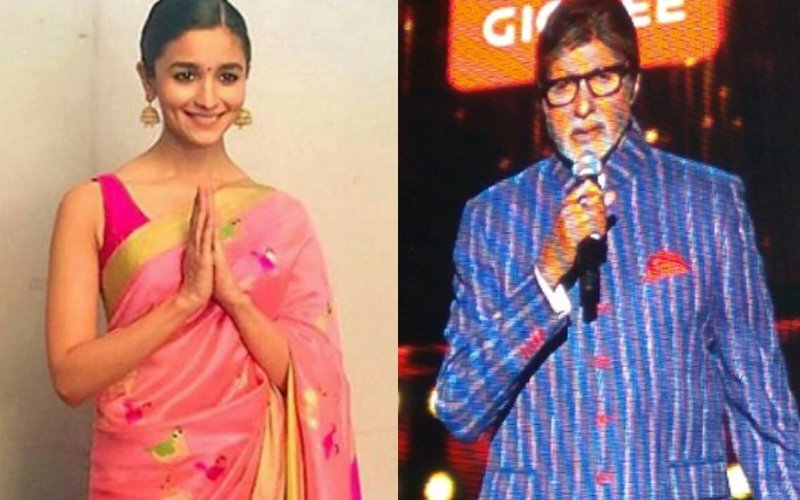 Zee Cine Awards 2017: Alia Bhatt & Amitabh Bachchan Crowned Best Actors