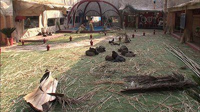 Bigg_Boss_contestants_are_made_to_spend_the_night_in_the_garden_area.jpg