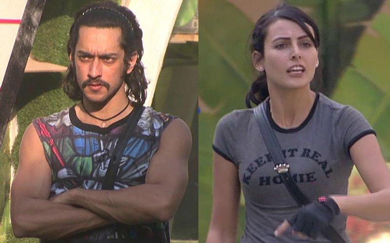 Bigg Boss Day 87: Rishabh kicks Mandana, Rochelle attacks him with a spade