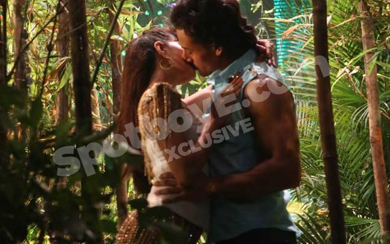 Jacqueline and Tiger kissed without being asked!