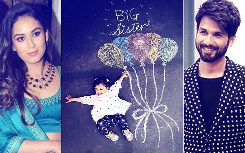 Mira Rajput's Loud Hint On Her Insta: I Am Pregnant!