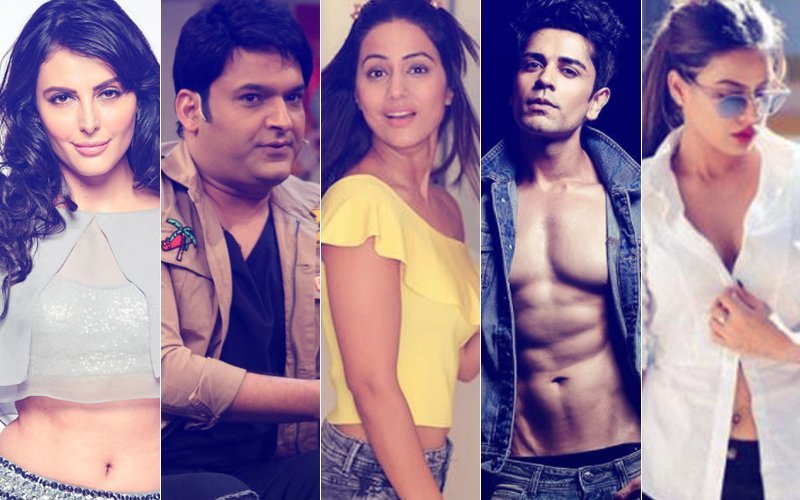 CONTROVERSY'S FAVOURITE CHILDREN: Here's Why Mandana, Kapil, Hina, Piyush, Nia Were INFAMOUS in 2017
