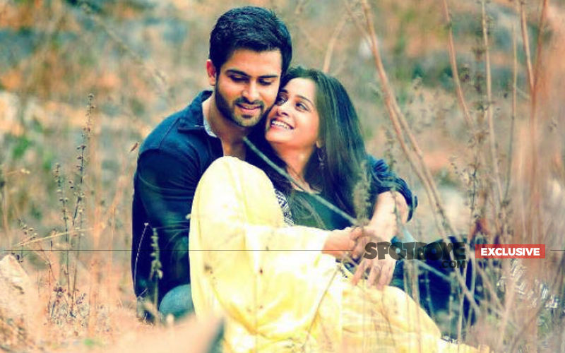 2019 Is For Babies: Dipika Kakar- Shoaib Ibrahim Would Like To Go The Family Way Next Year