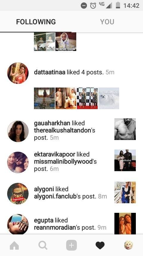 gauahar khan likes kushal tandons picture