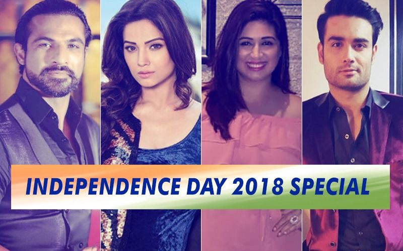 Happy Independence Day 2018: Mohammad Nazim, Adaa Khan, Vahbiz Dorabjee, Vivian DSena Reveal Their Favourite Freedom Fighters