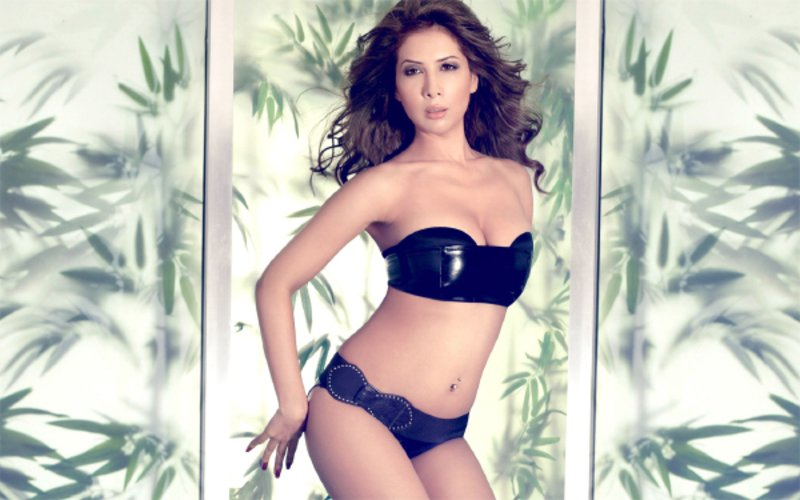 SHOCKER! Kim Sharma Is Working For Free These Days