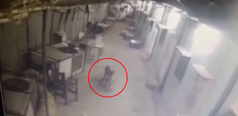 leopard snatches a dog in goregaon film city