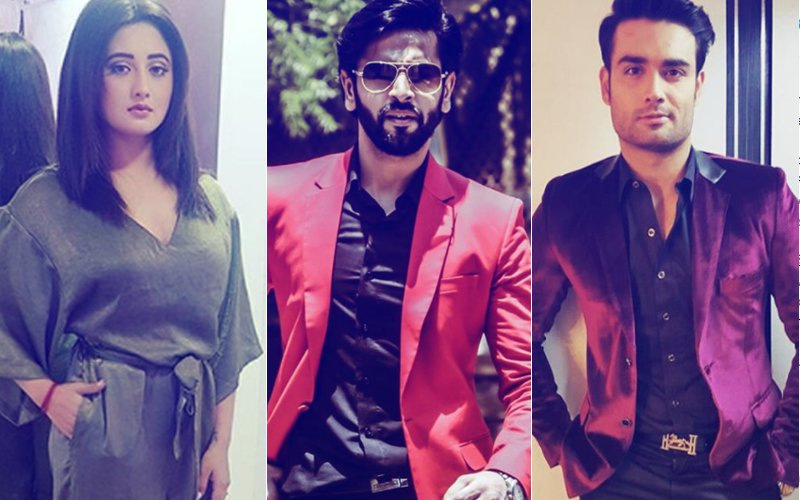 DROOL ALERT: Rashami Desai, Shashank Vyas & Vivian Dsena Talk About Their Favourite Winter Food