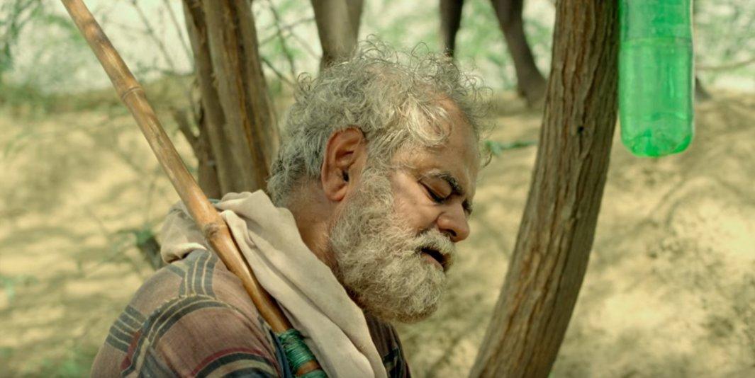 sanjay mishra in kadvi hawa