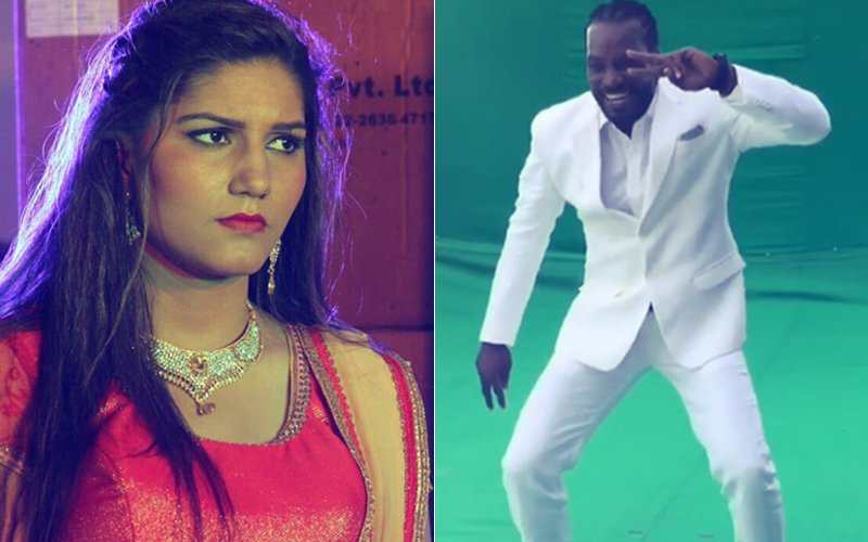 Sapna Choudhary's Oops Moment: Chris Gayle Was Dancing To Sunny Leone's Song, Not Hers