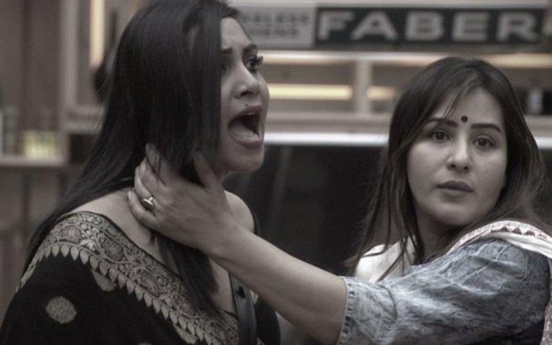शिल्पा शिंदे पर फिर भड़की अर्शी खान, लिया आड़े हाथ