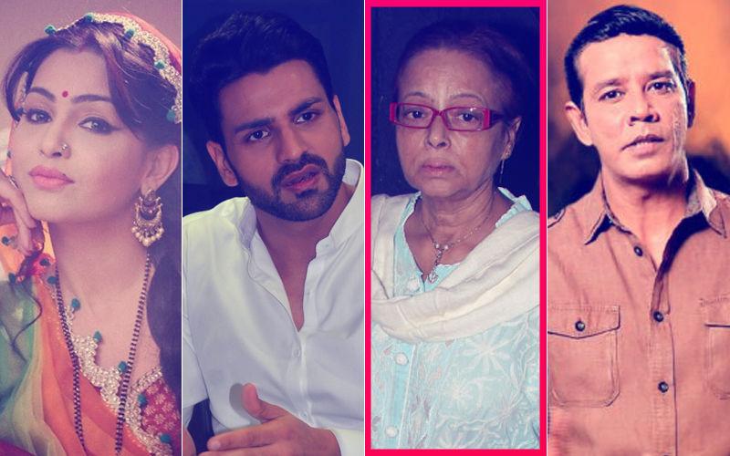Rita Bhaduri's Death: Shubhangi Atre, Vivek Dahiya & Annup Sonii Express Grief