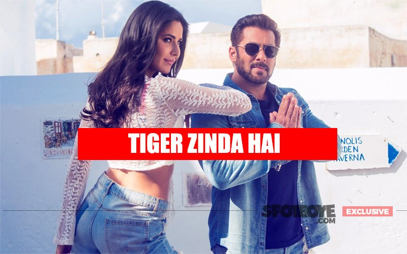 No Shadow Of Tubelight, Tiger Zinda Hai Will Romp Away To A Thundering 150 Crore In 4 Days: Trade Upbeat