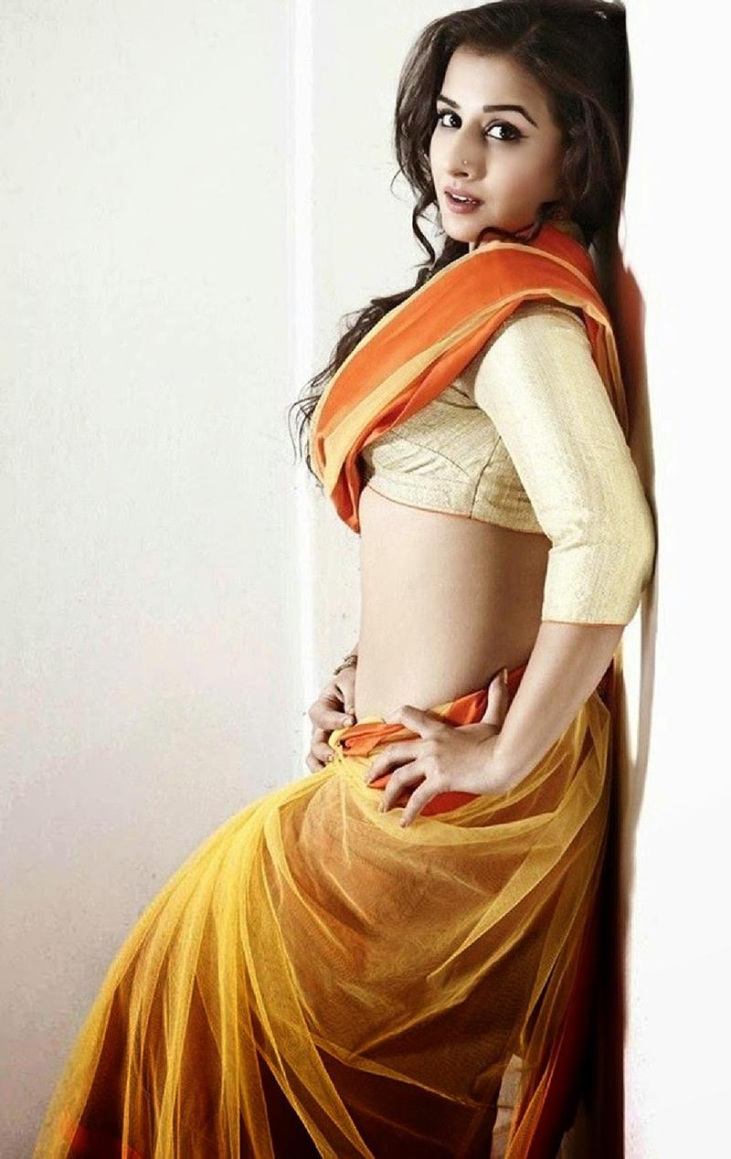 vidya balan looks sexy in a saree