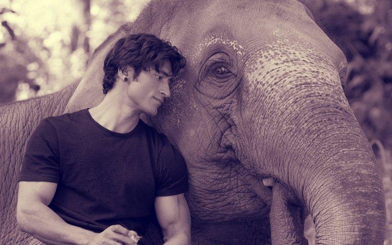 फिल्म 'जंगली' के लिए विद्युत् जामवाल सीख रहे हैं हाथियों की भाषा