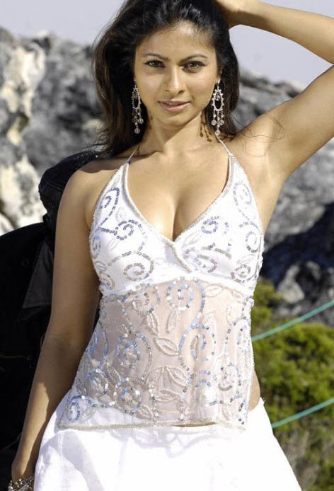 Opinion, the Tanisha mukherjee sex hot pic thanks for