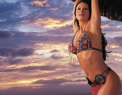 Looking Back Vijay Mallya S Rendezvous With Bollywood Calendar Girls