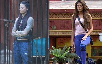 Bigg Boss 10, Day 32:  Lopamudra Defies Captain Bani, Swamiji Talks About Rebirth
