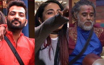 Bigg Boss 10, Day 68: Will Manu Punjabi And Swami Om Nominate Themselves For Bani's Sake?