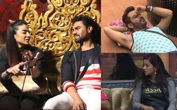 Bigg Boss 10, Day 71: Bani And Gaurav's 'Diplomacy' Irks Housemates, Mona UPSET With Manu