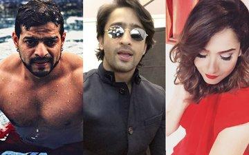 Karan Patel , Shaheer Sheikh & Ankita Lokhande Make A Splash In Indonesia