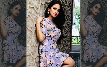 'Teri Meri Gal Ban Gayi': Rubina Bajwa Shares Fun BTS TikTok Videos