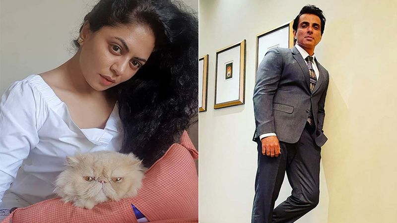 Kavita Kaushik Reacts To People Pouring Milk On Sonu Sood's Flex; Says, 'Sonu Will Be Unhappy With This Foolish And Uninspiring Act Of Wasting Milk'