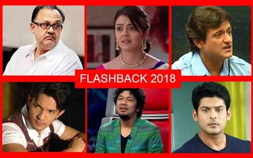 11 Ugly Controversies Of Indian Television 2018