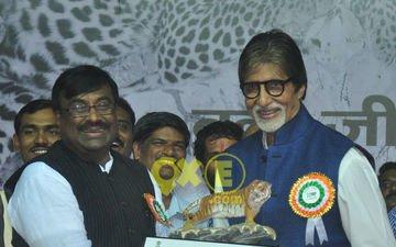 Amitabh Bachchan Debuts As Maharashtra's Tiger Ambassador