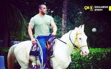 Horse Bites Salman Khan!