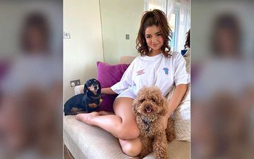 Demi Rose Puts Her Sexy Legs On Display While Petting Her Dogs; Mesmerizes With Her Million-Dollar Smile