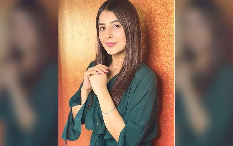 Bigg Boss 13 Fame Shehnaaz Gill Reveals The Secret Behind Her Classy English Captions On Social Media; Deets INSIDE