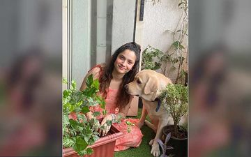 After Sushant Singh Rajput's Demise, Former Ladylove Ankita Lokhande And Her Partner Join #Plants4SSR Social Media Campaign