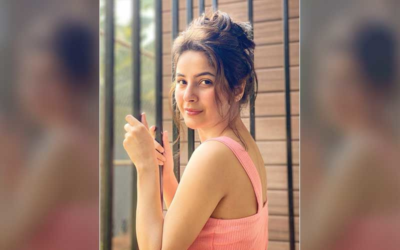 Bigg Boss 13 Fame Shehnaaz Gill Reveals What She Eats To Stay Fit; Shares The Secret Behind Her Fabulous Physique