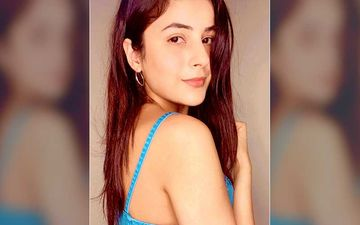 Bigg Boss 13 Fame Shehnaaz Gill Inspired Beauty And Skin Care Tips For A Flawless Radiant Skin And Luscious Long Hair