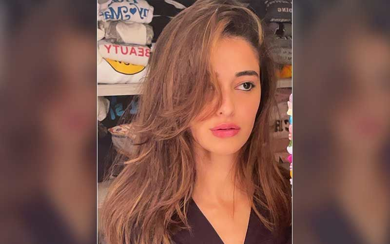 Ananya Panday Raises Question Over Being Called 'Struggling Didi'; Actress Has A Message For Haters Filled With 'Zeher'
