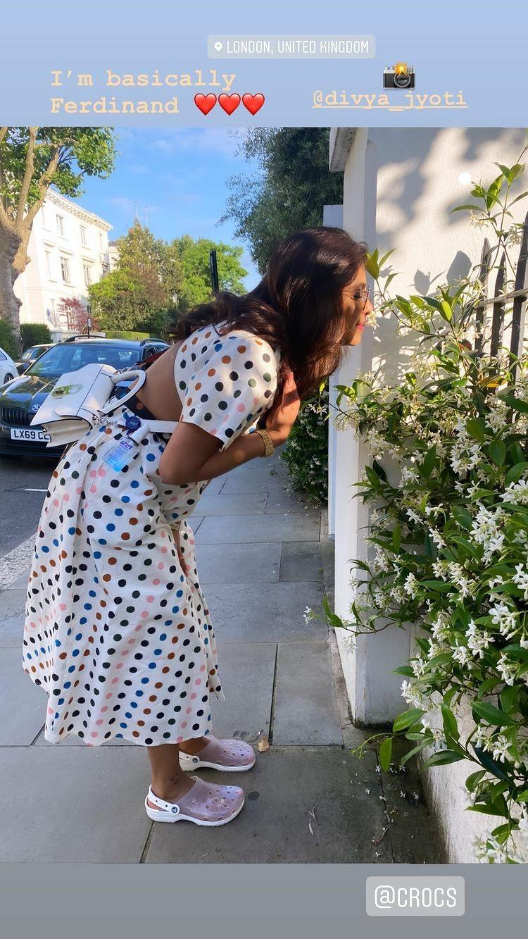 Priyanka Chopra Jonas Instagram stories