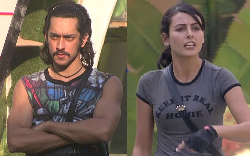 Bigg Boss Day 87: Rishabh kicks Mandana, Rochelle attacks him with a spade