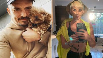 Katy Perry Seems Ready To Be Mrs Orlando Bloom; Fans Are Obsessing Over Those Dogs Though
