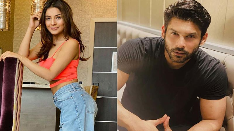 Shehnaaz Gill Declared Chandigarh's Most Desirable Woman Of 2020, Ex-Bigg Boss Contestant Finds Sidharth Shukla 'The Most Desirable Man'