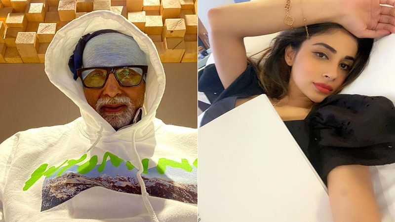 Amitabh Bachchan Hopes 2021 Is Better, Hangs Lemon And Green Chillies, His Brahmastra Co-Star Mouni Roy Has Something To Say