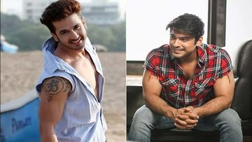 Bigg Boss 13: TV Actor Malhar Pandya Roots For Sidharth Shukla, Wants Him To Lift The BB13 Trophy