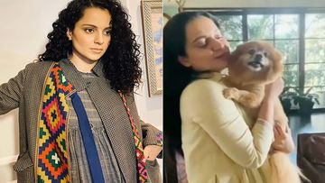 Kangana Ranaut's Dog Meets Her After Ages, Cries In Happiness In Her Arms- Video Inside