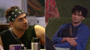 Bigg Boss 14: Aly Goni Accuses Vikas Gupta Of Being Responsible For His Removal From A Show, Claims Gupta Is A Liar