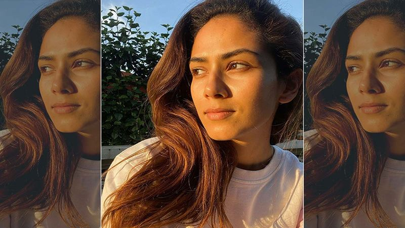 Mira Rajput Drops A Hilarious Truth Bomb About Parenting and We Couldn't Agree More