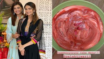 Shweta Tiwari Turns 40, Daughter Palak Tiwari Bakes A Cake With Stunning Pink Frosting