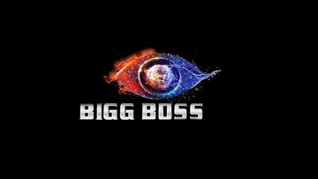 Ouch- Bombay High Courts Puts A Hammer On Makers Trying To Copy Bigg Boss – Reports