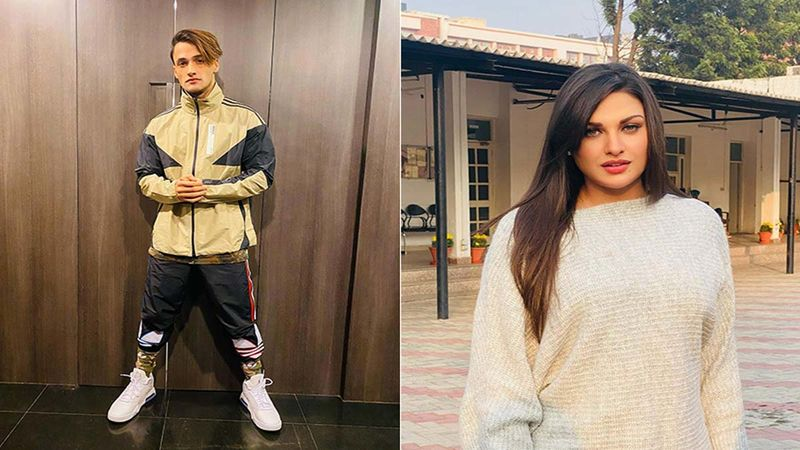 Bigg Boss 13's Asim Riaz And Himansh Khurrana Do An Insta Live At The Same Time, Fans Say, 'Bhabhi Bhi Online'