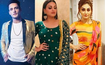 Bigg Boss 13: Are Asim Riaz And Himanshi Khurana A Couple? Shefali Jariwala Hints At It