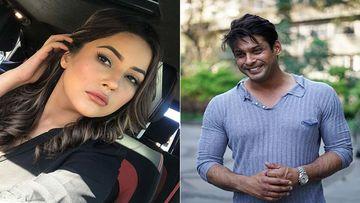 Mujhse Shaadi Karoge: Fans Urge GEC To Not Edit Shehnaaz's Big Revelation About Sidharth's Feelings Towards Her; Trend #MostWantedSidNaaz